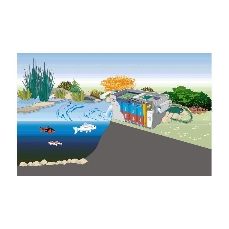 Filtre UV bassin Bitron C 24W Oase
