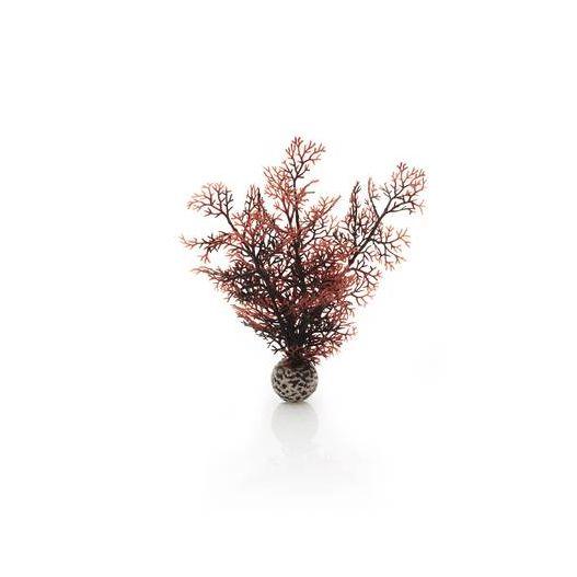 biOrb Petit corail couleurs d'automne