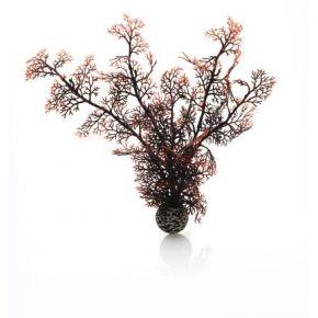 biOrb Corail moyen couleurs d'automne