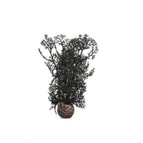 biOrb Petit corail noir