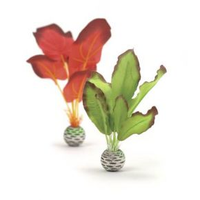 biOrb Petit set de plantes vertes & rouges