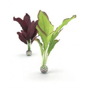 biOrb Set de plantes moyennes vertes & violettes