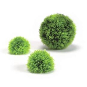 biOrb Set de 3 balles topiaires vertes