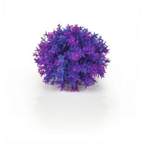 biOrb Boule topiaire violette