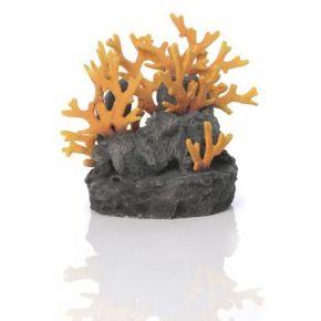 biOrb Roche volcanique avec corail rouge