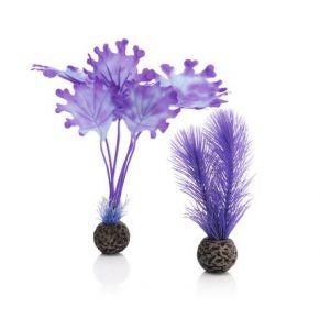 biOrb Petit set de plantes violettes