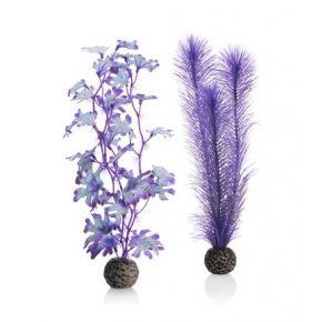 biOrb Set de plantes moyennes violettes