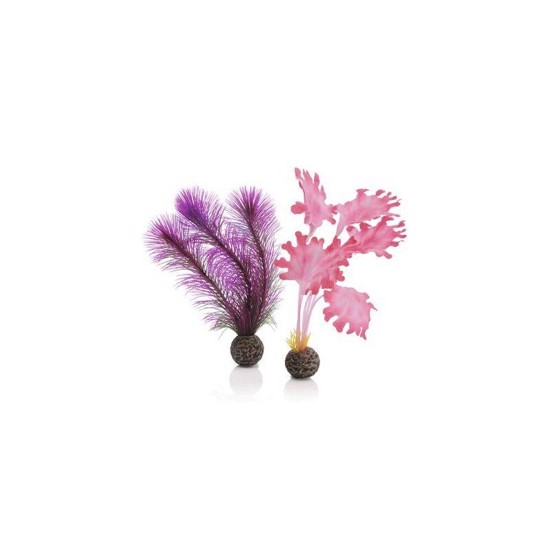 biOrb Petit set de plantes roses