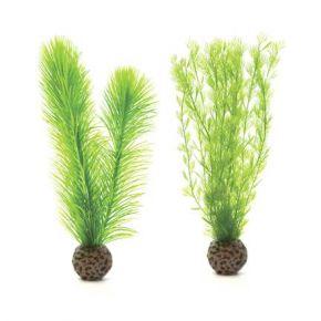 biOrb Petit set de plantes vertes