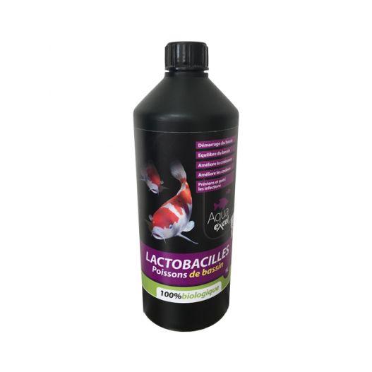 Lactobacilles Aqua Excel