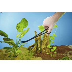 Ciseaux à plantes