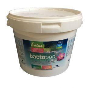 Bactopool 5Kg pour baignade biologique