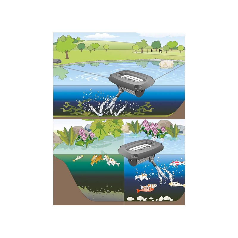 Pompe bassin AquaAir 250 Enrichissement en oxygène