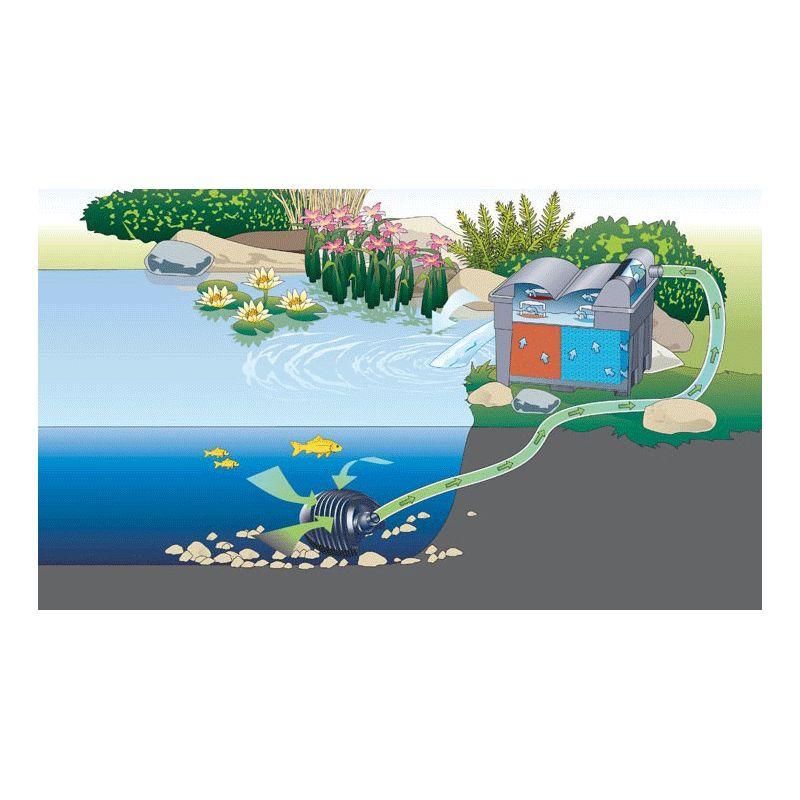 Filtration bassin BioSmart Set 7000 filtre gravitaire oase