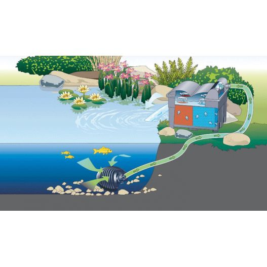 Filtration bassin BioSmart Set 14000 filtre gravitaire Oase