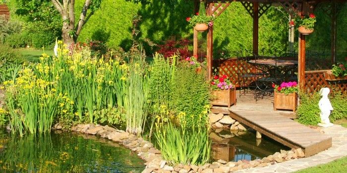 Entretenir votre bassin avec Aquatic Science